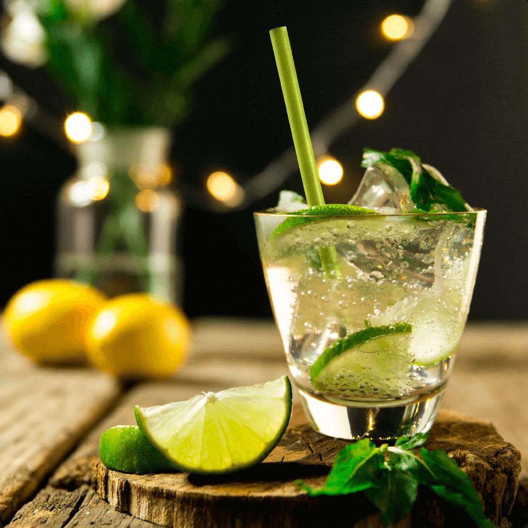 Cocktail  Happy Turtle Straw